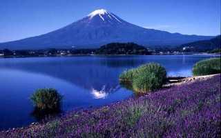 Символы Японии от цветов до горы Фудзияма