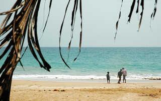 Виза на Шри-Ланку для россиян в 2020: летим на родину цейлонского чая