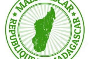 Виза на Мадагаскар для россиян в 2020 году: как попасть на тропический остров