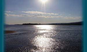 Река Волга: в деталях о каждом участке
