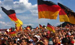 Социальный состав немецкой иммиграции