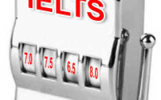 Как подготовиться к IELTS самостоятельно: способы и пробные тесты