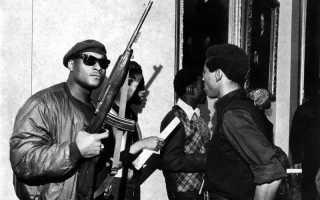 Чёрные пантеры — партия самообороны в США