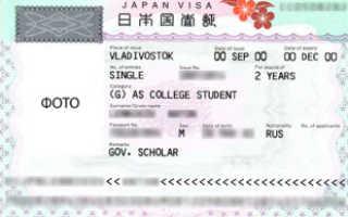 Виза в Японию для россиян в 2020 году: как оформить самостоятельно?
