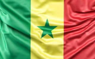 Виза в Сенегал для россиян в 2020 году: наносим визит Африке