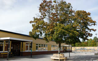 20 особенностей шведской школы