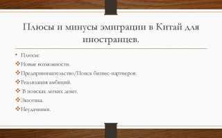 Плюсы и минусы эмиграции из России: честная оценка