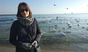 Жизнь в Болгарии для русских: отзывы переехавших