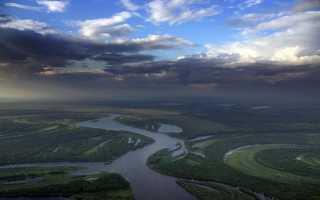 Река Обь: исток, течение, бассейн и устье