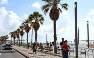 Жизнь в Израиле: уровень и продолжительность
